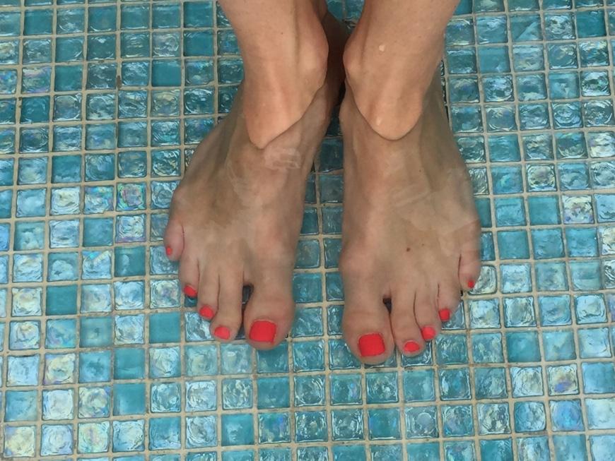 fila fötter torra eller blöta
