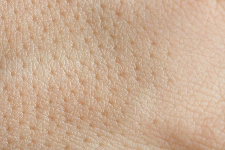 Närbild på porer